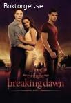The twilight saga-Breaking dawn, part 1